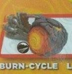 burnfigpost
